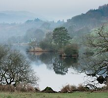 Little Isle Rydal Water by Chris Tarling