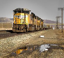 Reflections of the Union Pacific  by Rob Hawkins