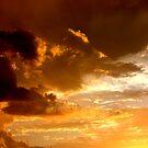 Arizona Sunset 4 by Trace Lowe