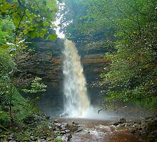Hardraw Force by Steve