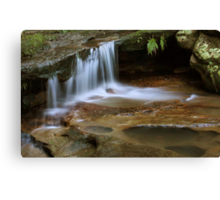 Tranquil Creek Canvas Print