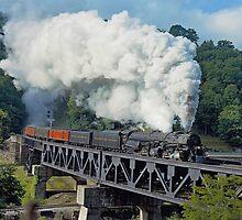 Norfolk & Western #1218 - Coopers, WV by TrainmasterBob