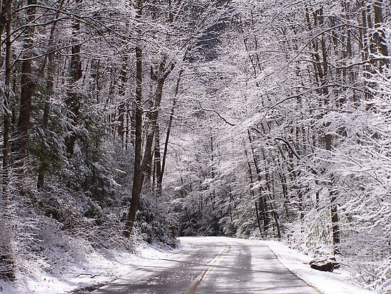 snowy road by Christopher  Ewing