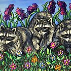 Racoons in The Garden by Rachelle Dyer