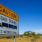 Road Trains Are Sizeable by squared
