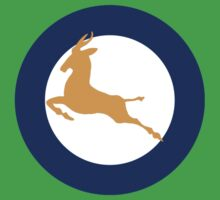 South African Roundel WW2 by DarkHorseDesign