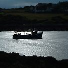SCALLOP BOAT RETURNS TO HARBOUR by PhotogeniquE IPA