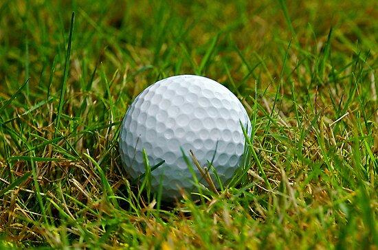 Golf Ball in the rough by Jeffrey  Sinnock