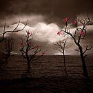 Ocean of Memories    by Steven  Sandner