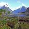 Milford Sound New Zealand by Pauline Tims