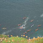 Sea Kayaking by Fiona MacNab / Orcadia Images by Fiona MacNab