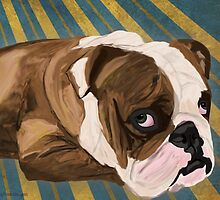 Brown and White Bulldog Lying, Blue & Yellow Back by ibadishi