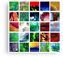 Blocks of Color Canvas Print