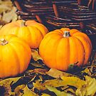 Three little pumpkins, autumn leaves and a basket by 7horses