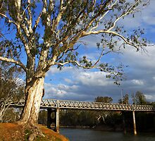 John Foorde Bridge at Corowa by Darren Stones