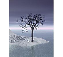 3d Scandinavian winter twilight Photographic Print