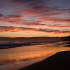 Ocean Sunset by Heather Davies