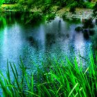 Lush Lake by Christiaan