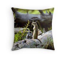 Squirrel Power Throw Pillow