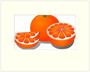 Cut orange illustration by kgtoh
