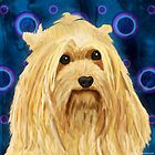 Digitally Painted Blond Hairy Yorkshire on Blue by ibadishi