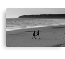 Meet you on the beach at 5.00am mate Canvas Print