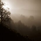 Sepia Mist by PigleT