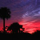 FLORIDA SUNSET by TomBaumker