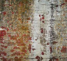 Alcatraz by Christopher Barker