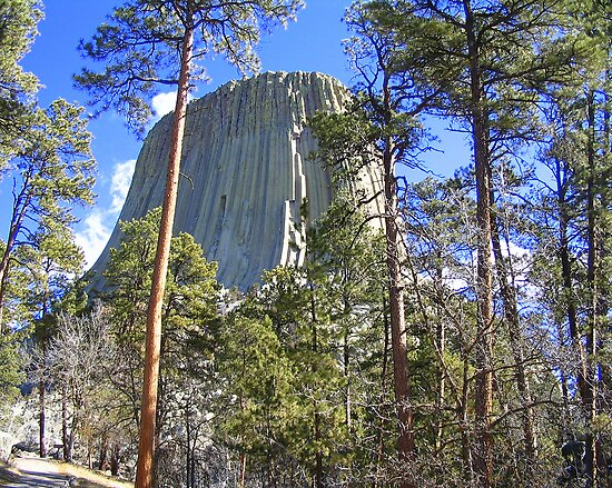 Devil's Tower by paula whatley