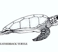 LEATHERBACK TURTLE by Redlady