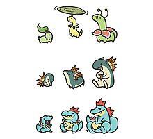 2nd gen pokemon cute starters Photographic Print