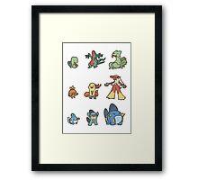 3rd gen pokemon starters cute design Framed Print