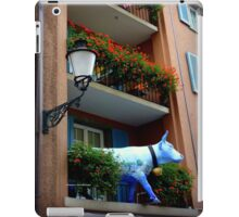 Quaint Swiss Window Box  iPad Case/Skin