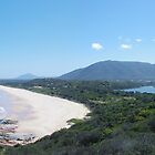 View from Camden Head Lookout, Dunbogan. by Liz Worth