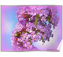 Bumble on a Butterfly Bush Poster