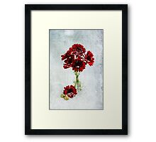 Christmas Flowers  Framed Print