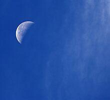 Morning Moon by grandaded