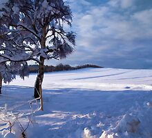 Beautiful winter landscape background by ronyzmbow