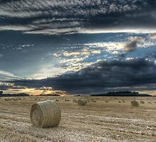 Thorner Fields by MattD