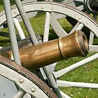 Large Cannon by Rpnzle