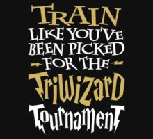 Triwizard Tournament by wreckluse