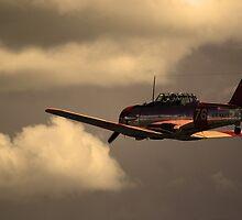 Flying Home by Ruben D. Mascaro