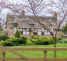 Country Cottage : My Dream Home by AnnDixon