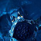 Blue by brilightning