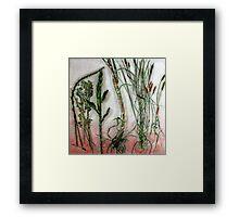 Mornington Peninsula Grasslands 10 Framed Print