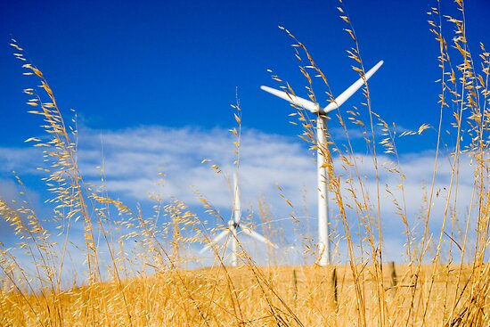 Wind farm generators over dry grass by Cooper