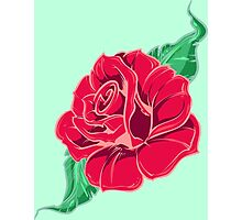 Rose In Bloom Photographic Print