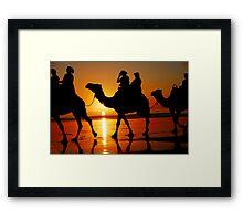 Camels at Sunset Framed Print