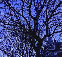 Midnight Blue by Vanessa  Warren
